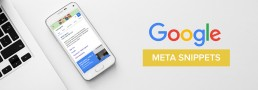 Meta Snippets Google